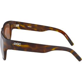 POC Want Glasses tortoise brown